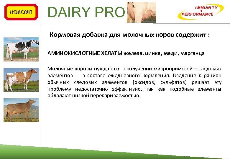 DAIRY PRO Кормовая добавка для молочных коров содержит : АМИНОКИСЛОТНЫЕ ХЕЛАТЫ железа, цинка, меди,