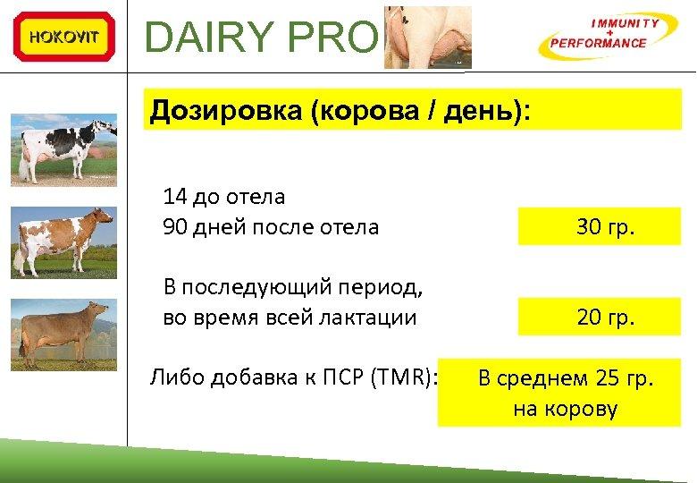 DAIRY PRO Дозировка (корова / день): 14 до отела 90 дней после отела 30