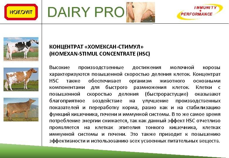 DAIRY PRO КОНЦЕНТРАТ «ХОМЕКСАН‐СТИМУЛ» (HOMEXAN‐STIMUL CONCENTRATE (HSC) Высокие производственные достижения молочной коровы характеризуются повышенной
