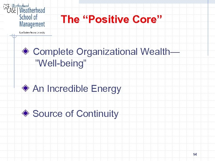 """The """"Positive Core"""" Complete Organizational Wealth— """"Well-being"""" An Incredible Energy Source of Continuity 14"""