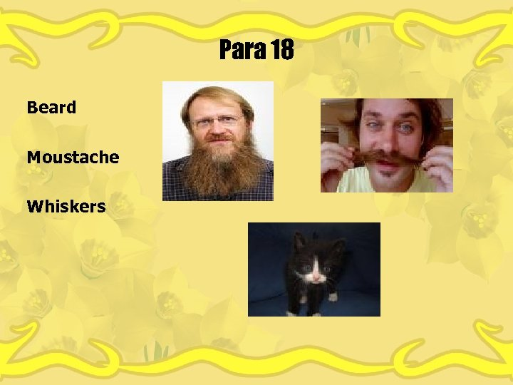 Para 18 Beard Moustache Whiskers