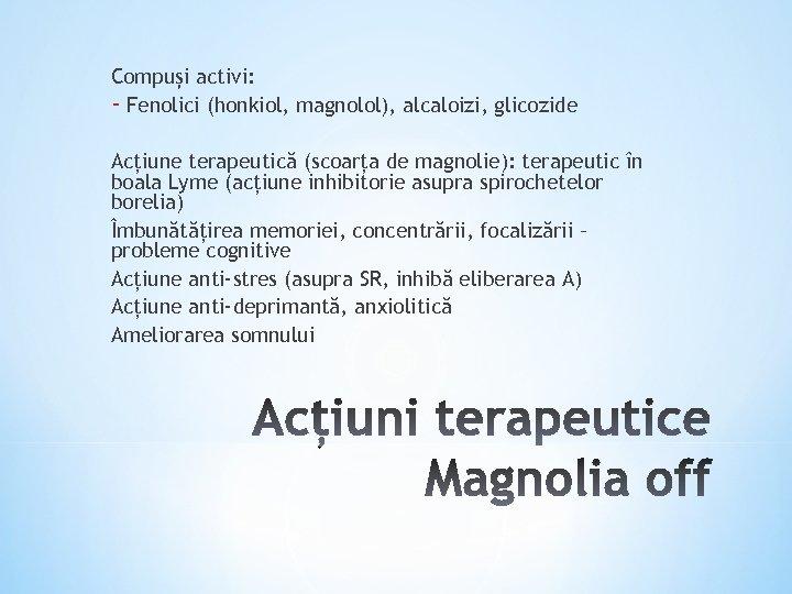 Compuși activi: - Fenolici (honkiol, magnolol), alcaloizi, glicozide Acțiune terapeutică (scoarța de magnolie): terapeutic