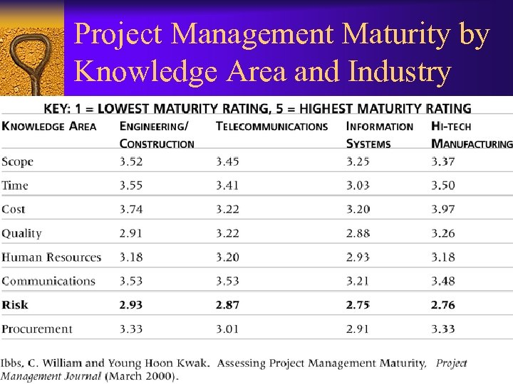 Project Management Maturity by Knowledge Area and Industry