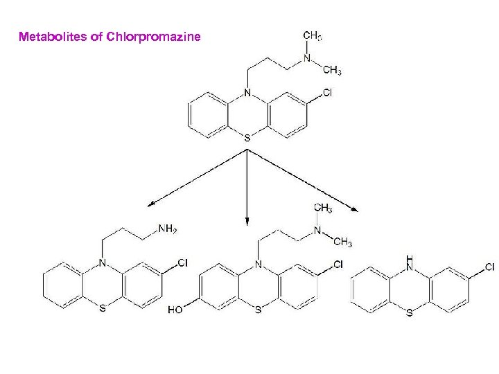Metabolites of Chlorpromazine