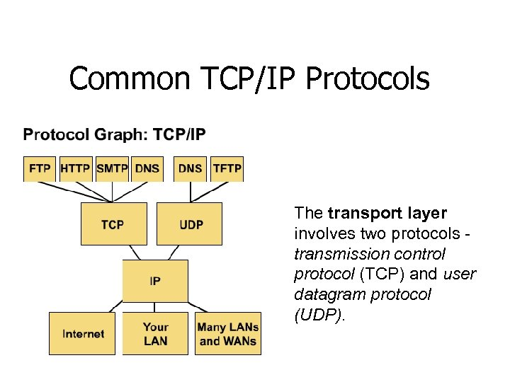 Common TCP/IP Protocols The transport layer involves two protocols transmission control protocol (TCP) and