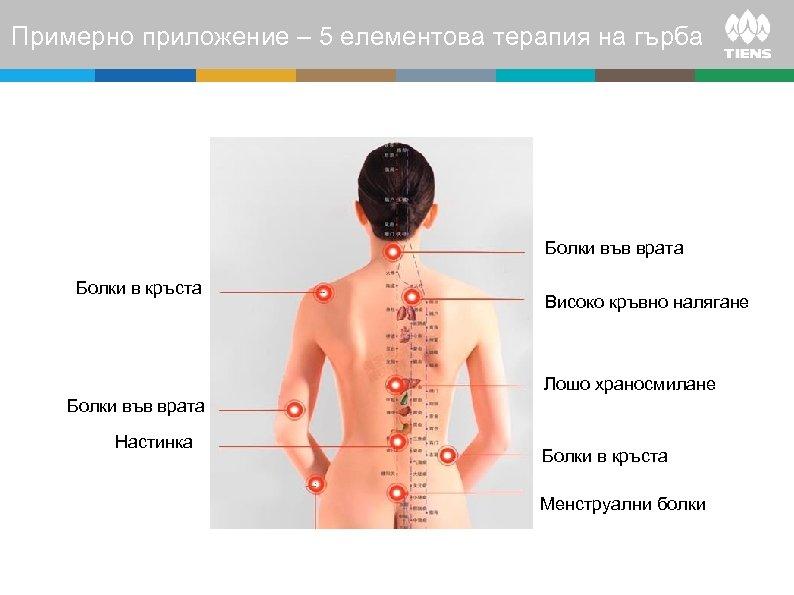 Примерно приложение – 5 елементова терапия на гърба Болки във врата Болки в кръста