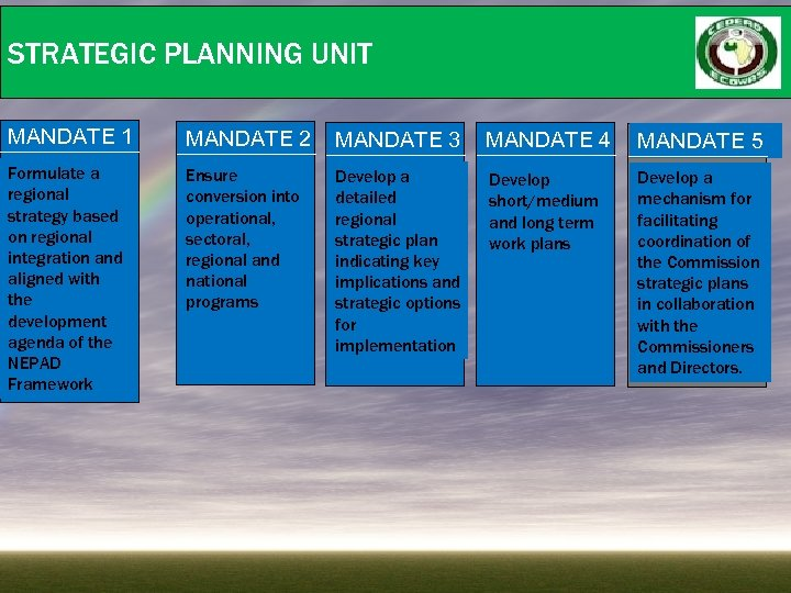 STRATEGIC PLANNING UNIT MANDATE 1 MANDATE 2 MANDATE 3 MANDATE 4 MANDATE 5 Formulate