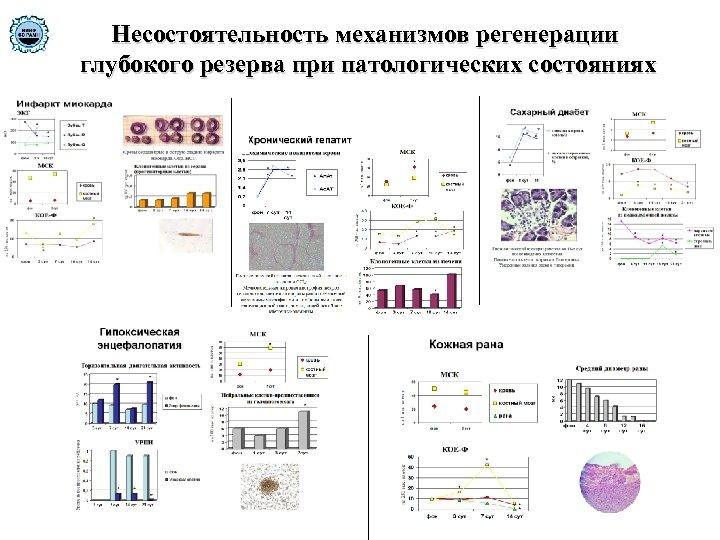 Несостоятельность механизмов регенерации глубокого резерва при патологических состояниях
