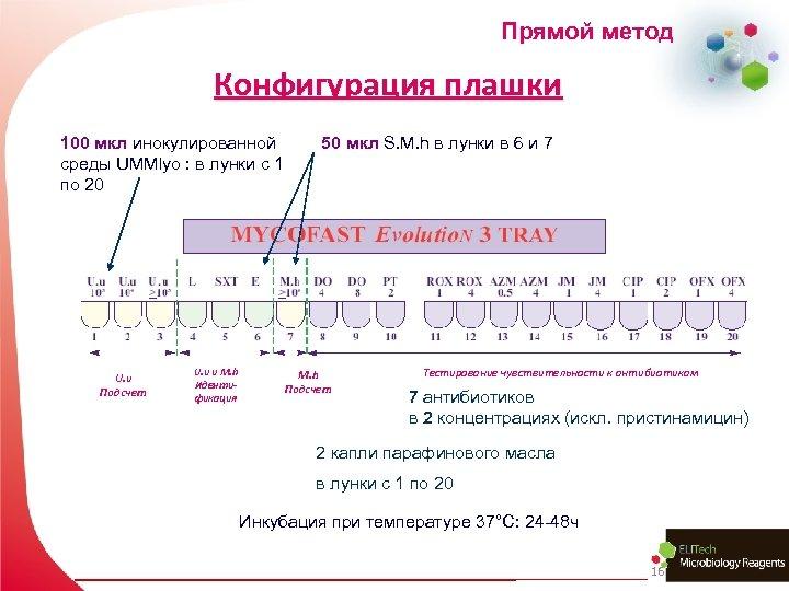 Прямой метод Конфигурация плашки 100 мкл инокулированной среды UMMlyo : в лунки с 1