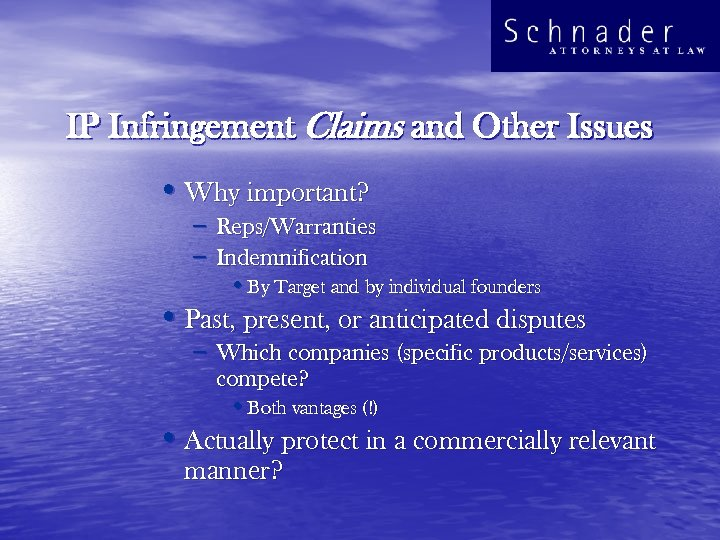 IP Infringement Claims and Other Issues • Why important? – Reps/Warranties – Indemnification •