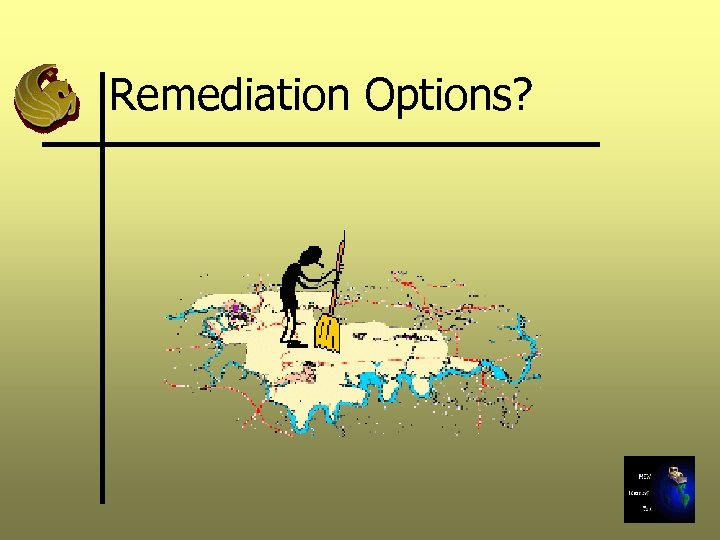 Remediation Options?