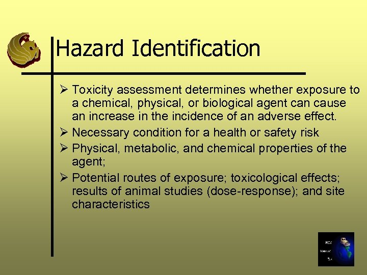 Hazard Identification Ø Toxicity assessment determines whether exposure to a chemical, physical, or biological