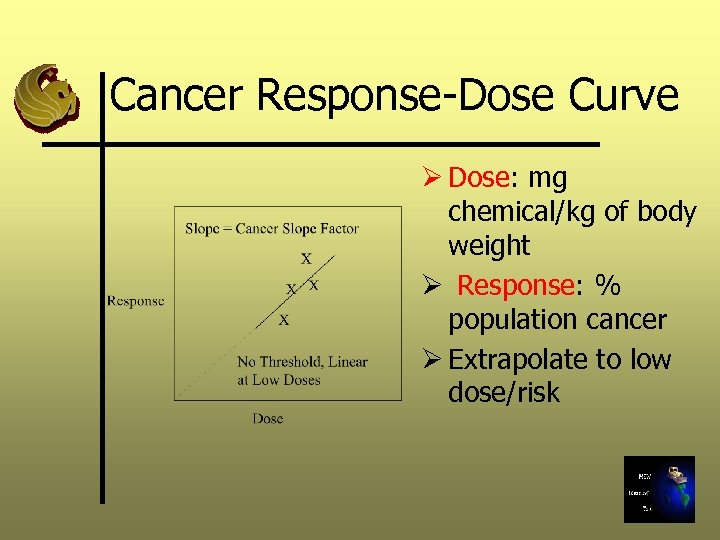 Cancer Response-Dose Curve Ø Dose: mg chemical/kg of body weight Ø Response: % population