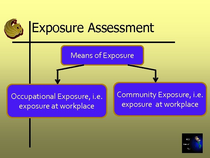 Exposure Assessment Means of Exposure Occupational Exposure, i. e. exposure at workplace Community Exposure,