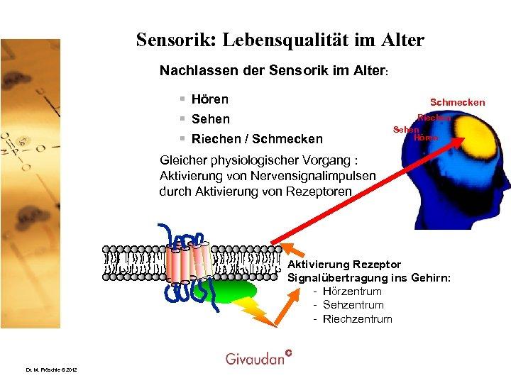Sensorik: Lebensqualität im Alter Nachlassen der Sensorik im Alter: § Hören § Sehen §