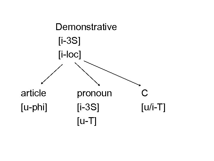 Demonstrative [i-3 S] [i-loc] article [u-phi] pronoun [i-3 S] [u-T] C [u/i-T]
