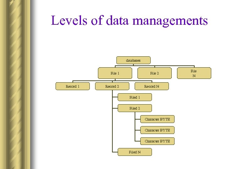 Levels of data managements databases File 1 Record 1 File 2 Record N Filed