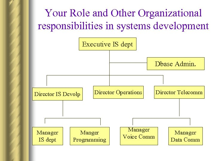Your Role and Other Organizational responsibilities in systems development Executive IS dept Dbase Admin.