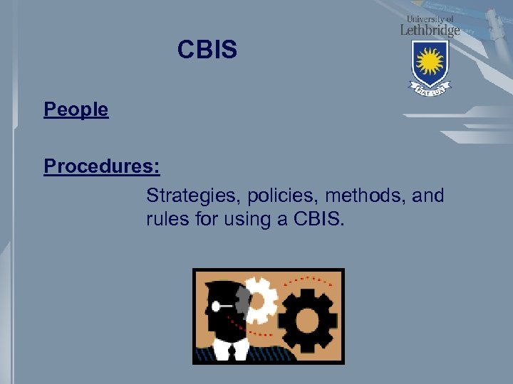 CBIS People Procedures: Strategies, policies, methods, and rules for using a CBIS.