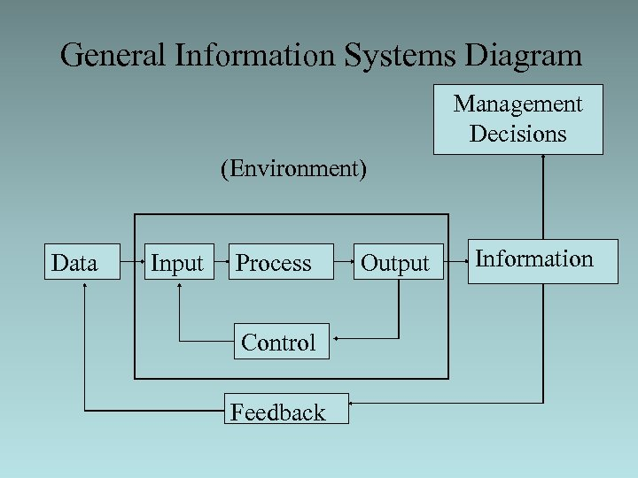 General Information Systems Diagram Management Decisions (Environment) Data Input Process Control Feedback Output Information