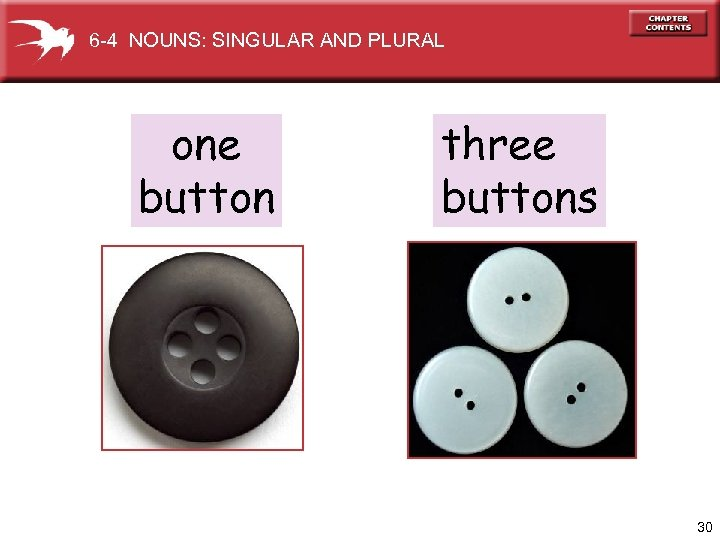 6 -4 NOUNS: SINGULAR AND PLURAL one button three buttons 30