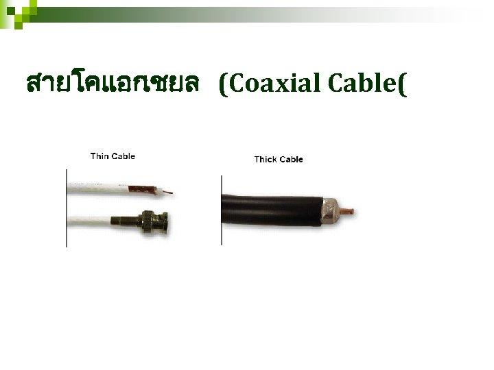 สายโคแอก เชยล (Coaxial Cable(