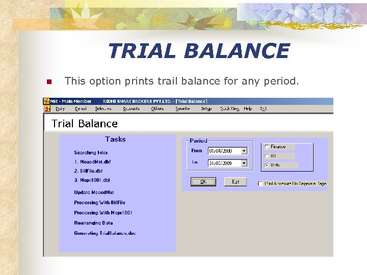 TRIAL BALANCE n This option prints trail balance for any period.