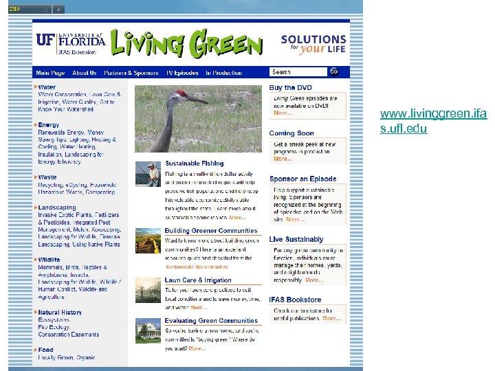 www. livinggreen. ifa s. ufl. edu