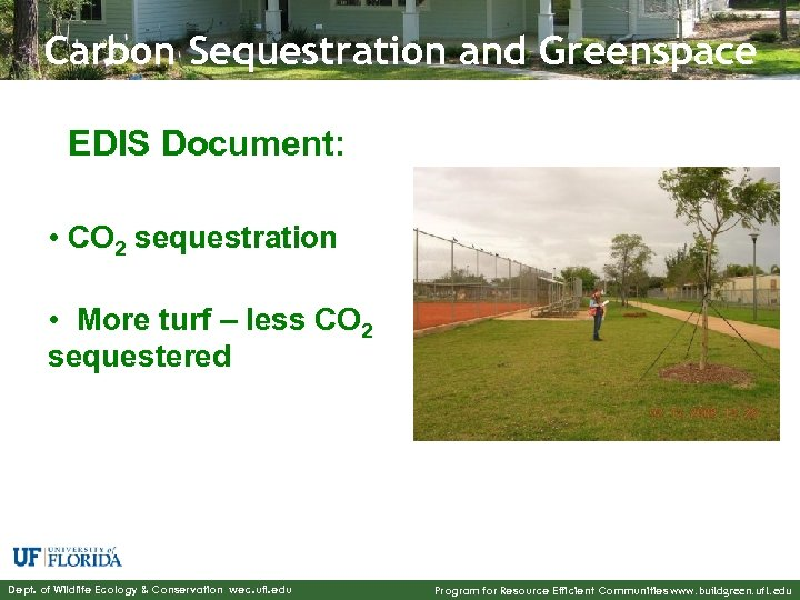 Carbon Sequestration and Greenspace EDIS Document: • CO 2 sequestration • More turf –