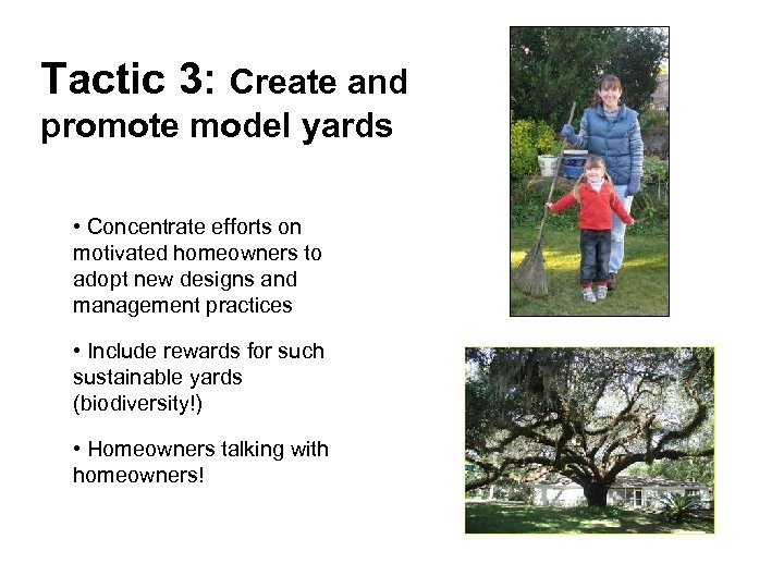 Tactic 3: Create and promote model yards • Concentrate efforts on motivated homeowners to