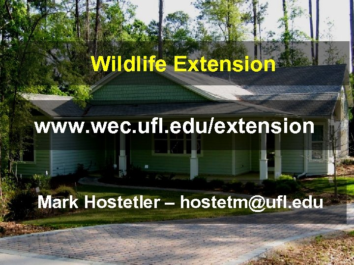Wildlife Extension www. wec. ufl. edu/extension Mark Hostetler – hostetm@ufl. edu