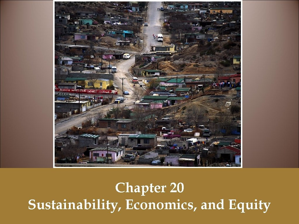 Chapter 20 Sustainability, Economics, and Equity