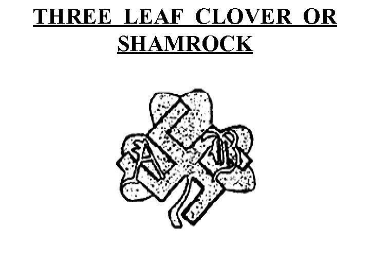 THREE LEAF CLOVER OR SHAMROCK