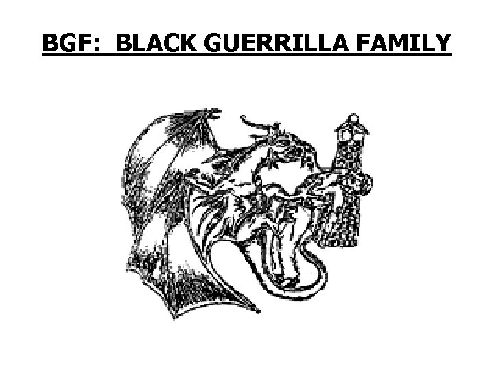 BGF: BLACK GUERRILLA FAMILY