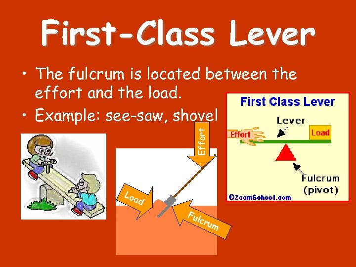 First-Class Lever Effort • The fulcrum is located between the effort and the load.