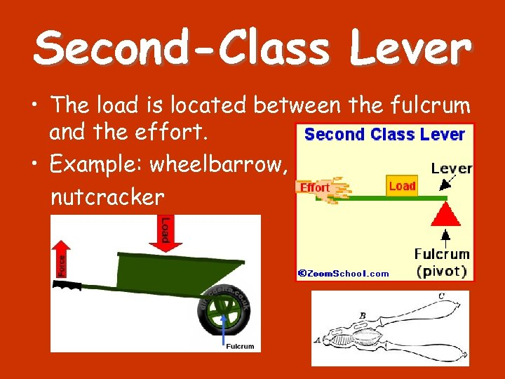 Second-Class Lever • The load is located between the fulcrum and the effort. •