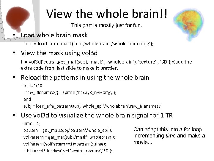 View the whole brain!! This part is mostly just for fun. • Load whole