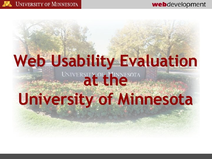 Web Usability Evaluation at the University of Minnesota
