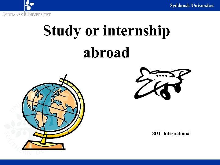 Study or internship abroad SDU International