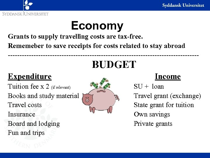 Economy Grants to supply travelling costs are tax-free. Rememeber to save receipts for costs