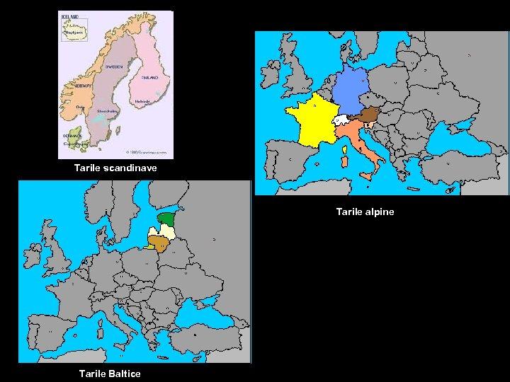 Tarile scandinave Tarile alpine Tarile Baltice