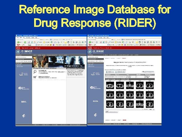 Reference Image Database for Drug Response (RIDER)