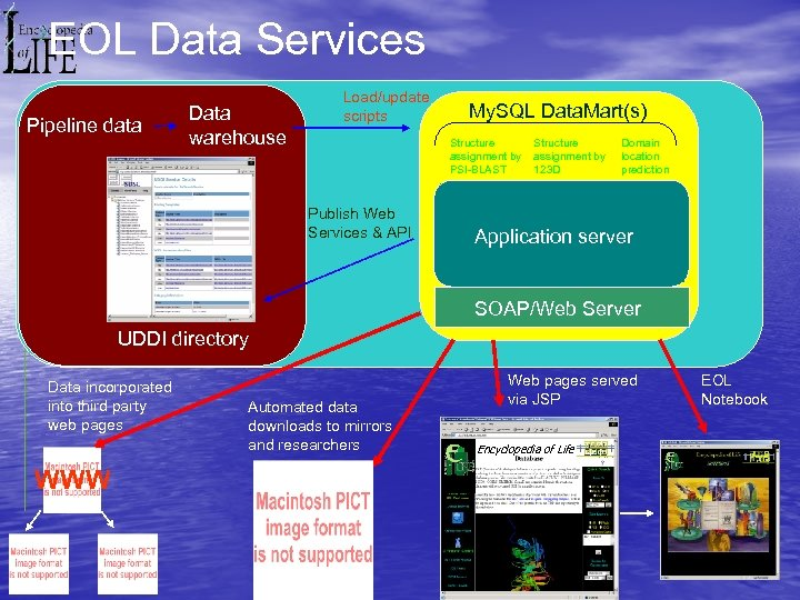 EOL Data Services Pipeline data Data warehouse Load/update scripts My. SQL Data. Mart(s) Structure