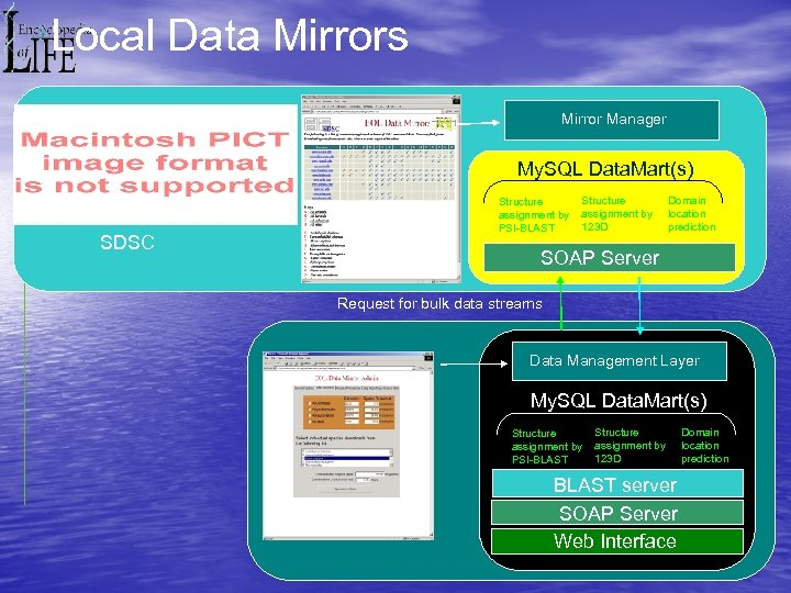 Local Data Mirrors Mirror Manager My. SQL Data. Mart(s) SDSC Structure assignment by PSI-BLAST