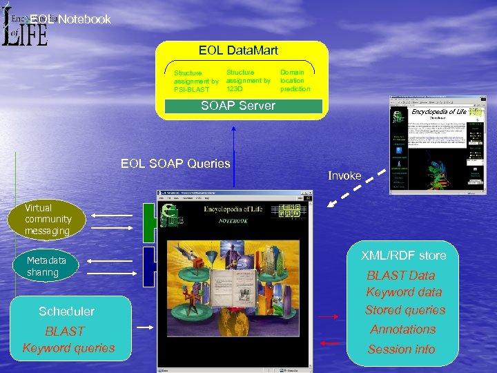 EOL Notebook EOL Data. Mart Structure assignment by PSI-BLAST Structure assignment by 123 D