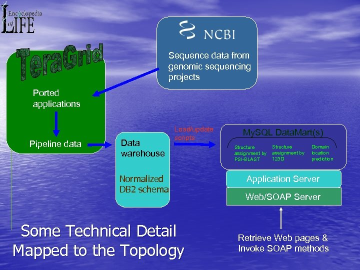 Sequence data from genomic sequencing projects Ported applications Pipeline data Data warehouse Load/update scripts