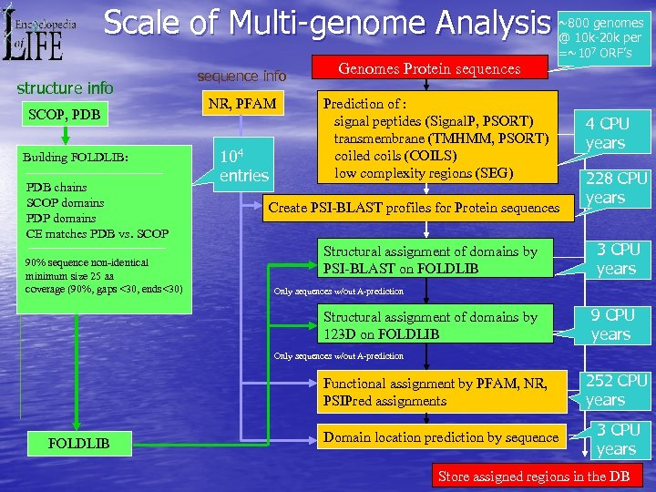 Scale of Multi-genome Analysis structure info SCOP, PDB Building FOLDLIB: PDB chains SCOP domains
