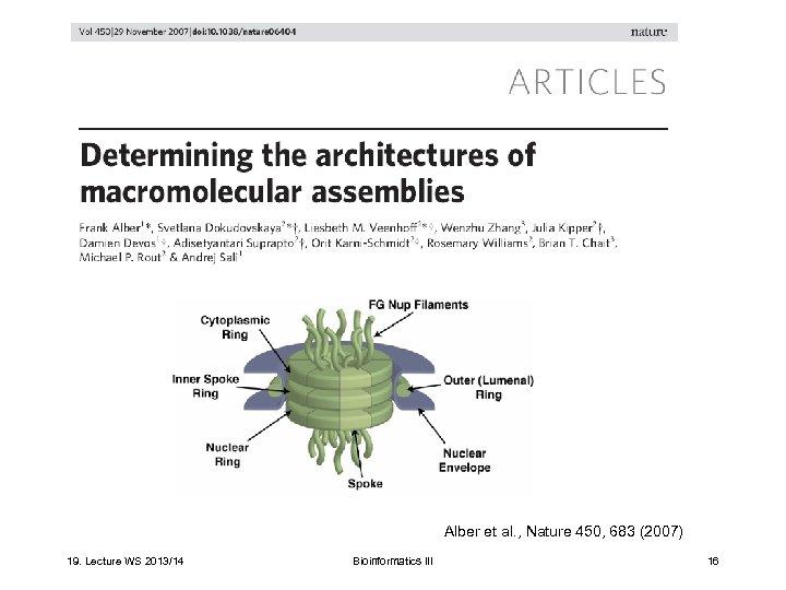 Alber et al. , Nature 450, 683 (2007) 19. Lecture WS 2013/14 Bioinformatics