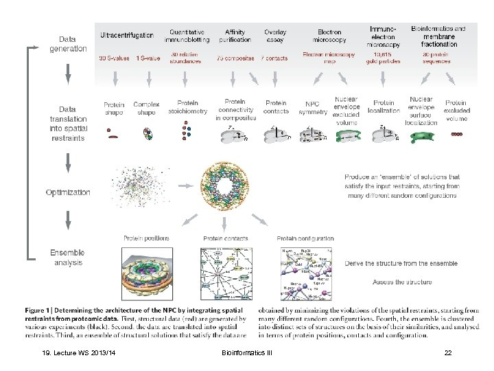 19. Lecture WS 2013/14 Bioinformatics III 22