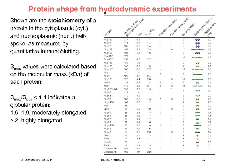 Protein shape from hydrodynamic experiments Shown are the stoichiometry of a protein in the